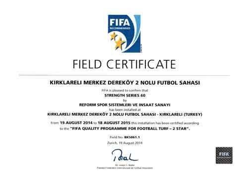 fifa-certificate-11