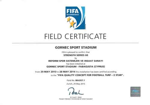 fifa-certificate-12