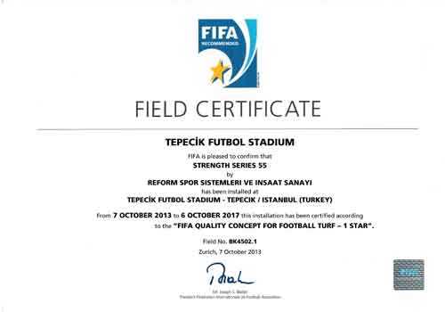 fifa-certificate-14