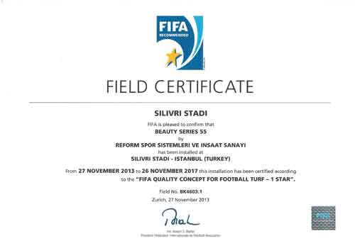 fifa-certificate-17