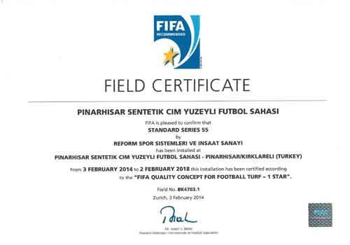 fifa-certificate-21