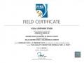 fifa-certificate-22