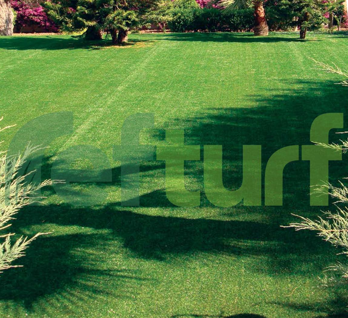 çim bakımı, çim resmi, çim fotoğrafı, çimen görüntüsü, çimen görseli, yeşil,